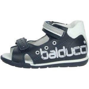 Balducci CITA2511